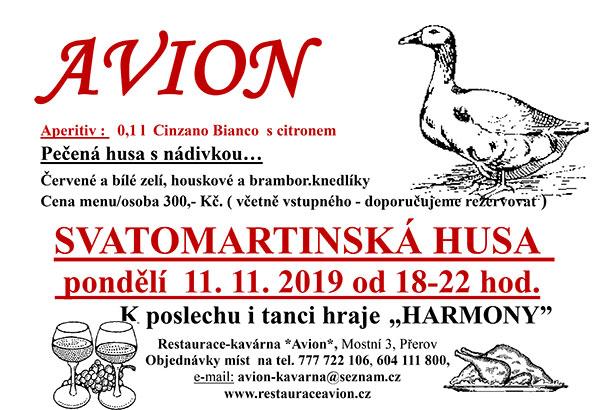 Svatomartinská-husa--2019
